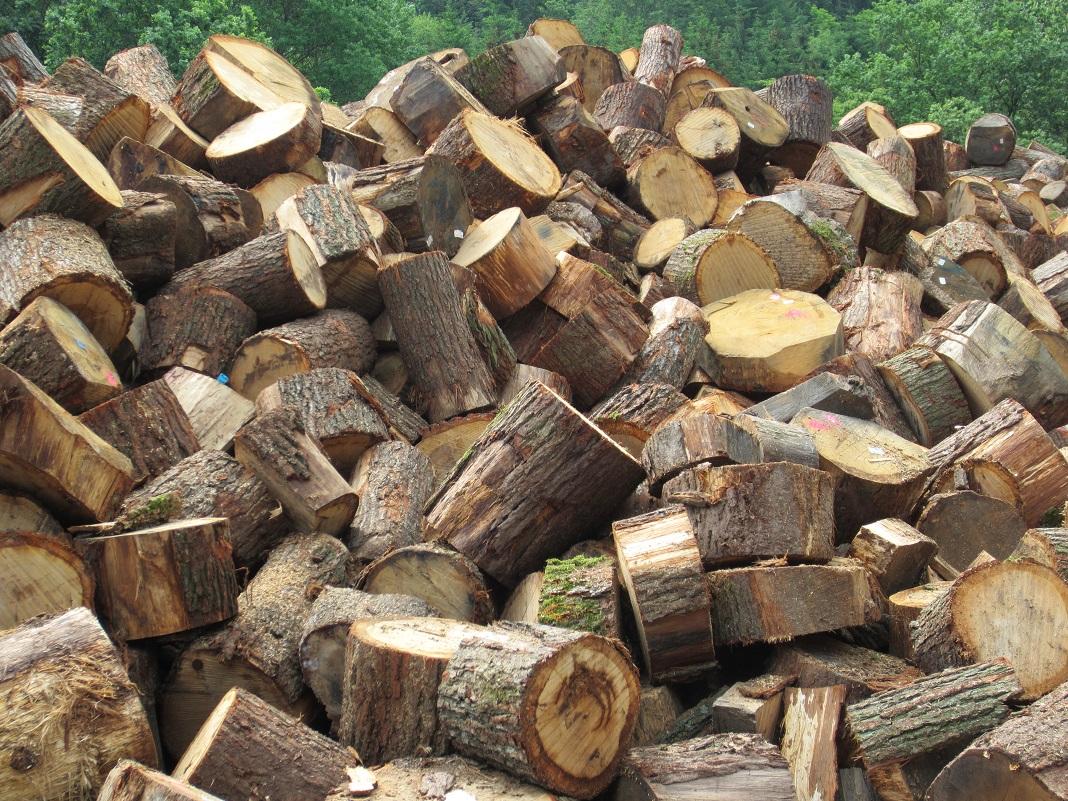 Нелегален транспорт на огревно дрво, извршителите избегале од
